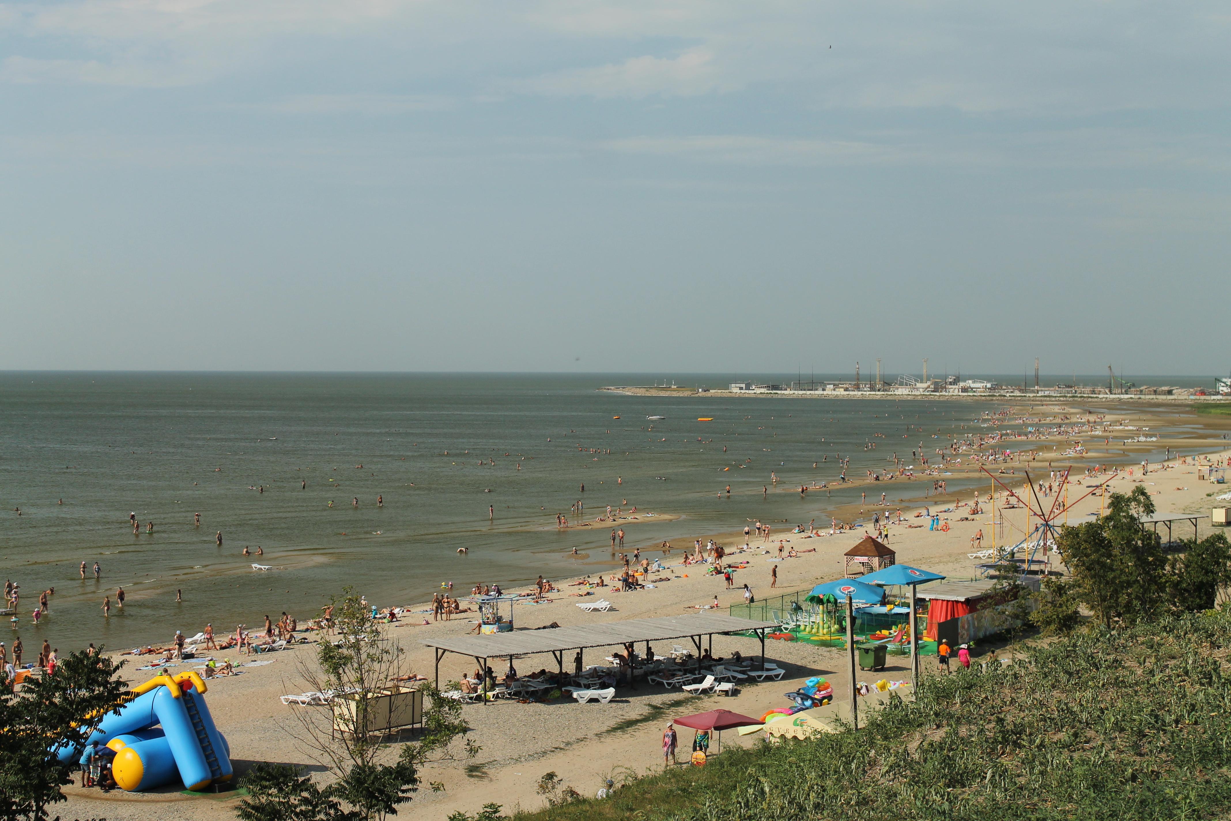 азовское море ейск фото города клюква июне, поспевает